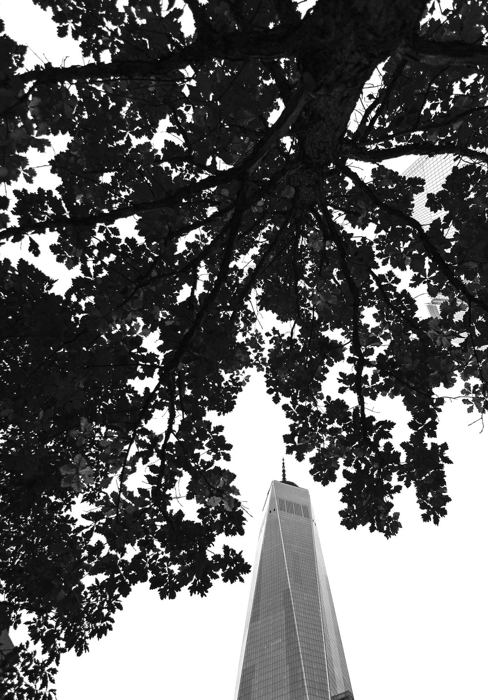 Freedom Tower bnw.jpg