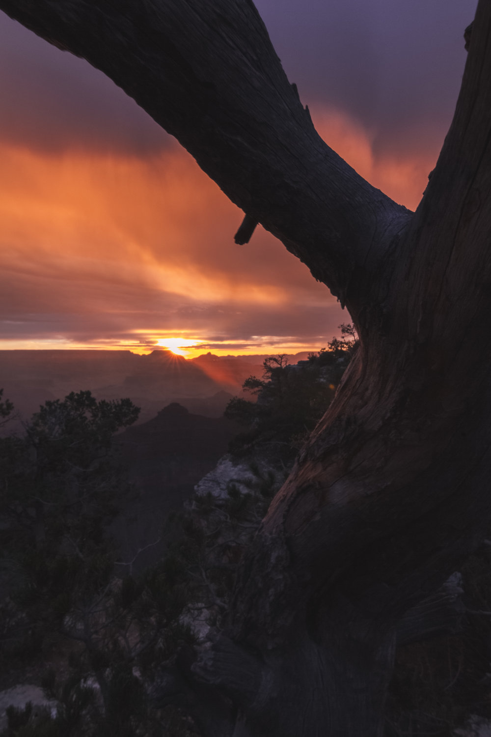 Grand Canyon Sunrise.jpg