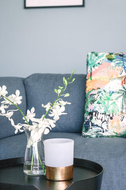 Sleek European Minimal Living Room
