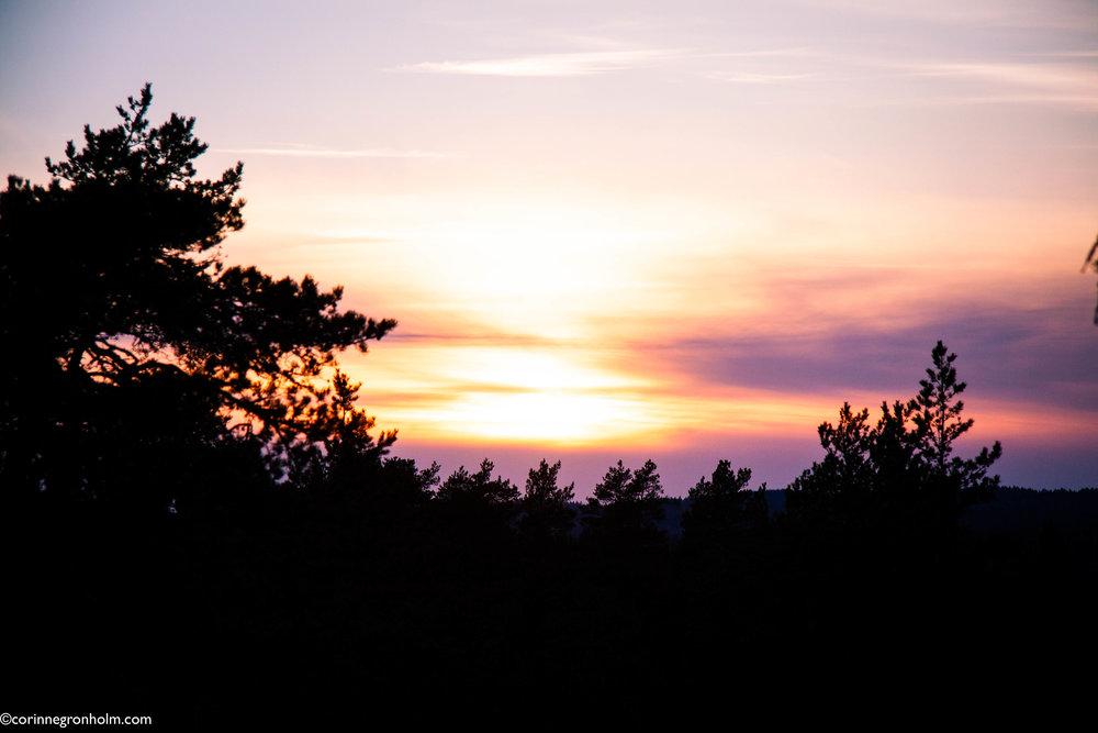 solnedgång.jpg