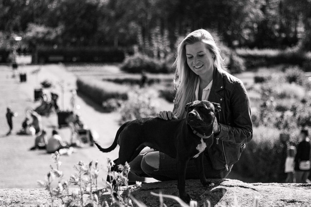 Vår plan är att ta en likadan hund som tjejen som är med på bilden. Otroligt fin ras.
