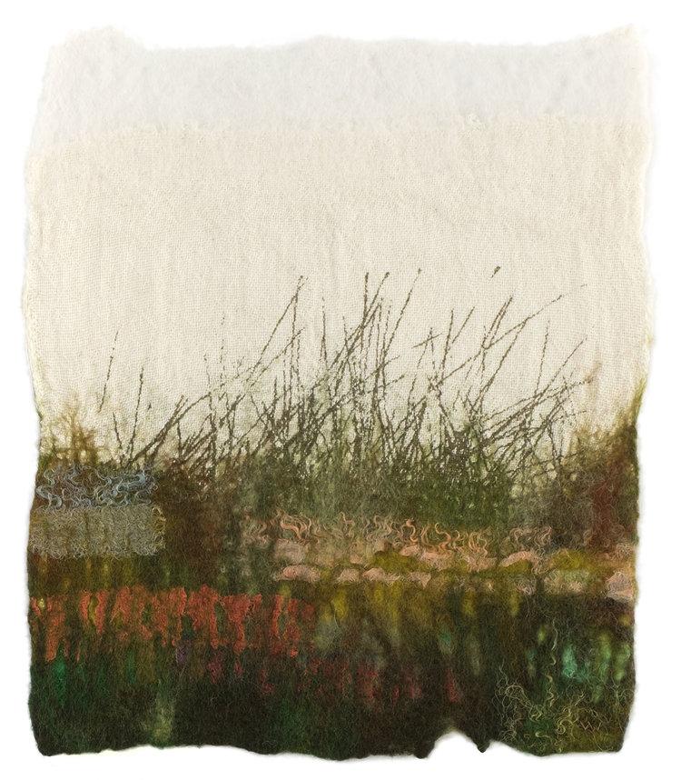 Grass-Meadow.jpg