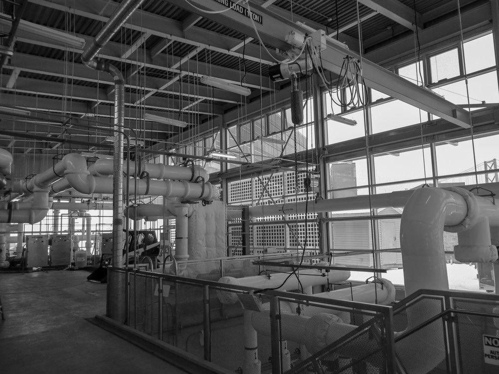 BIO Energy Centre.jpg