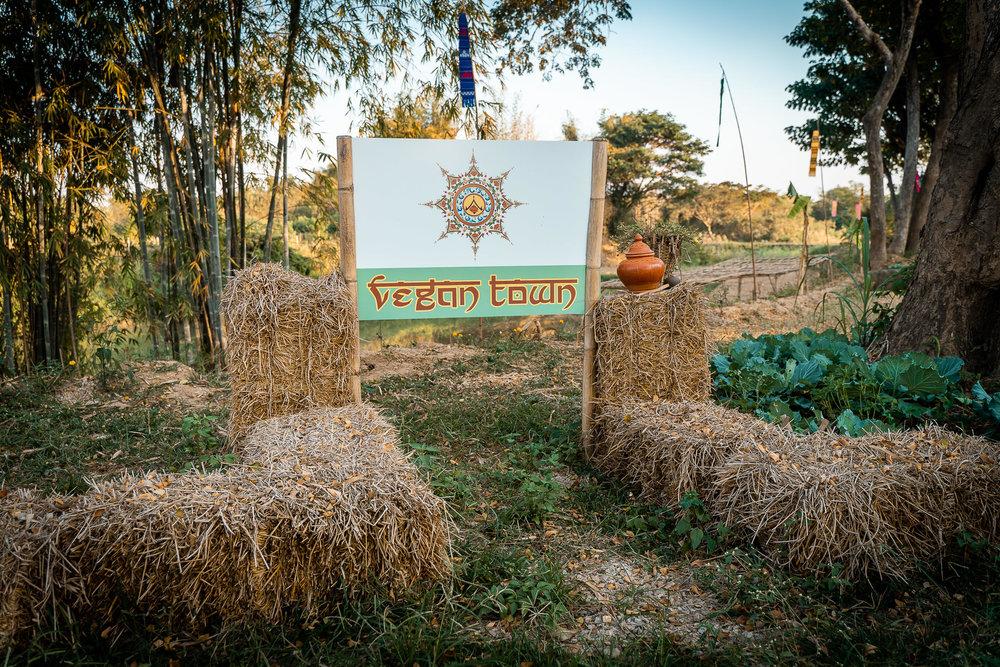 2019-02-10 - Vegan Town Lampang-Maik-Kleinert-photographer-videographer-28-2048px.jpg