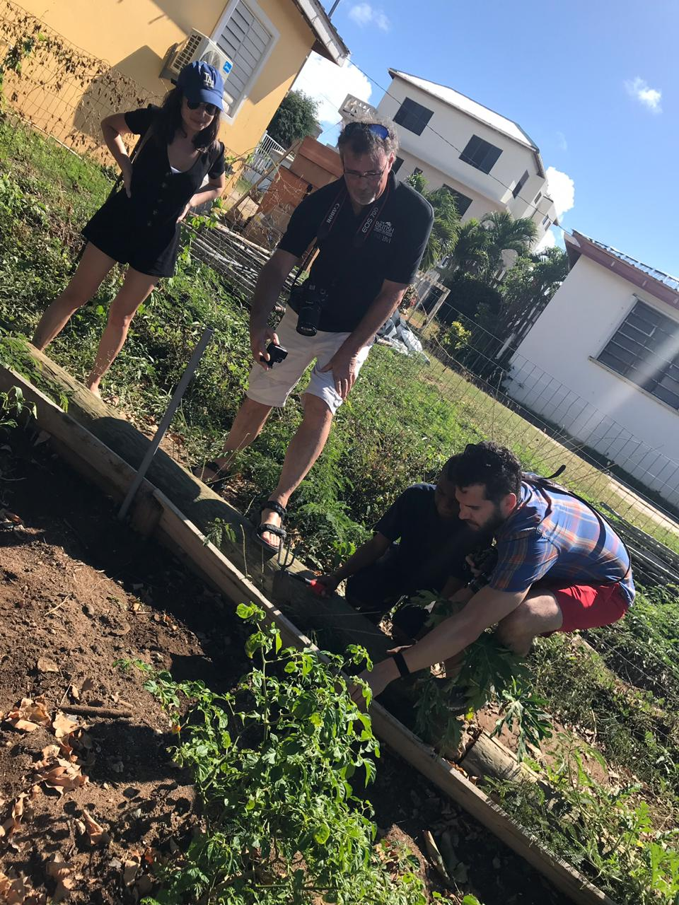 The BVIwant2go contest winner Dan Bakst planting with students at Valley Day School in Virgin Gorda.