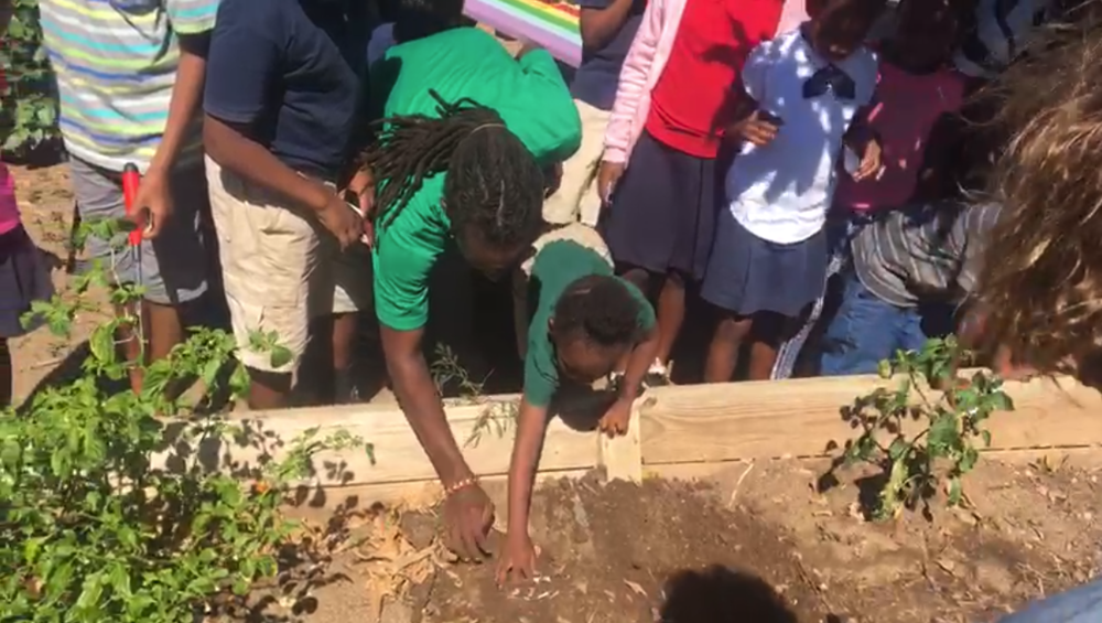 Jahnai Caul of BVI Tourist Board planting Seeds of Love seed cards with students of Valley Day School.