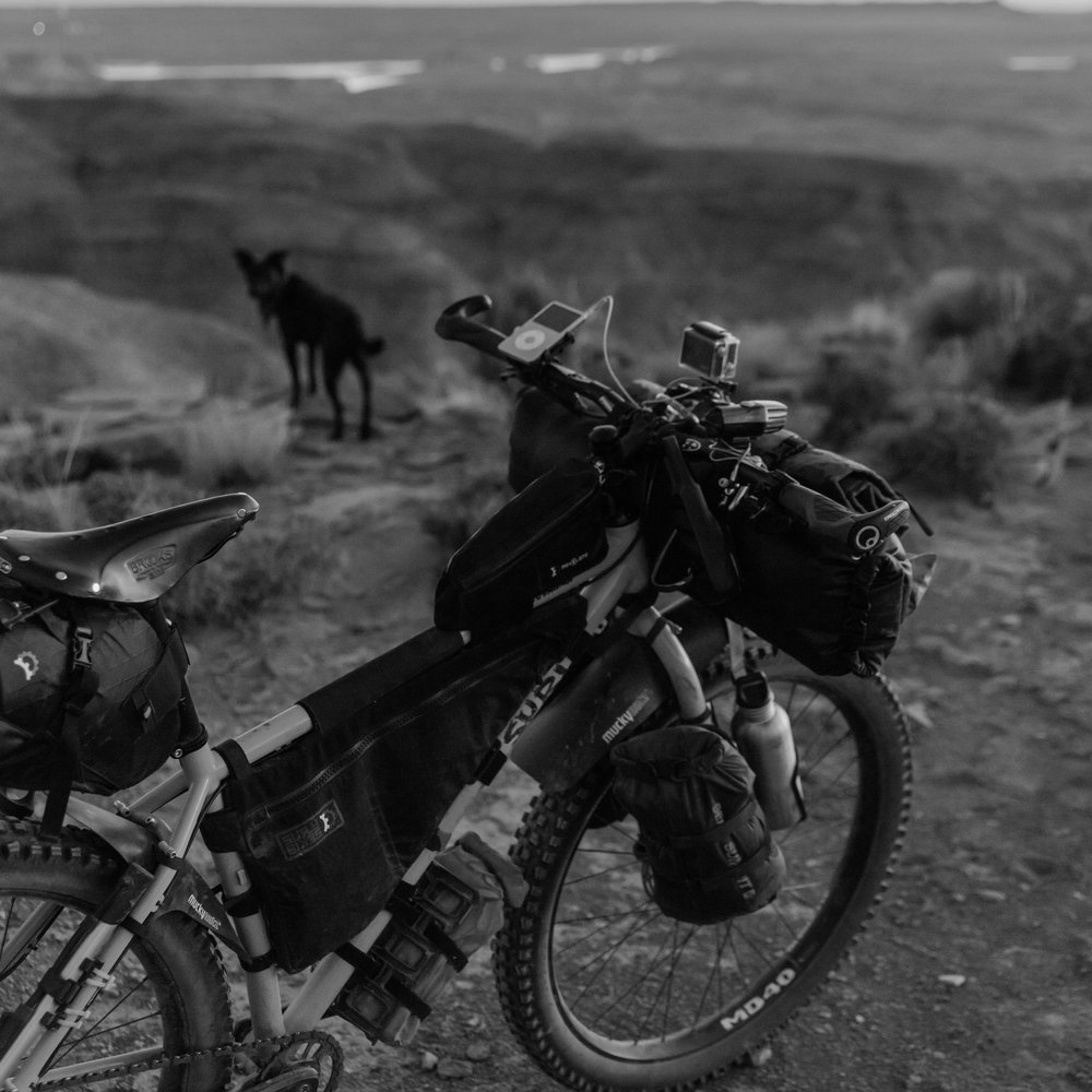 Bikes & Racks -