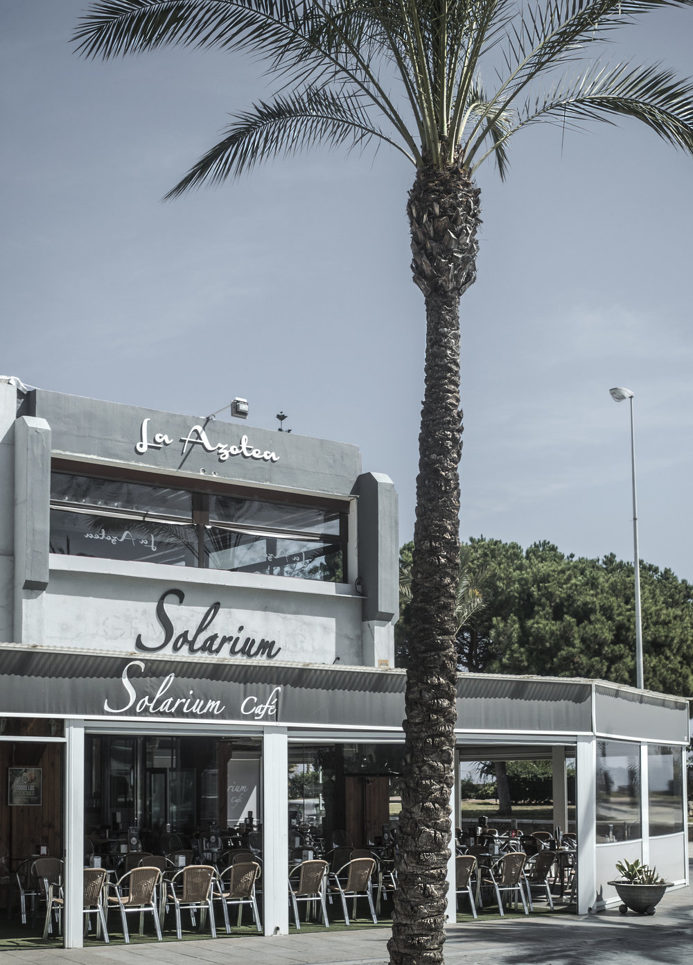palms coffee street photography beach Torre Del Mar Spain travel