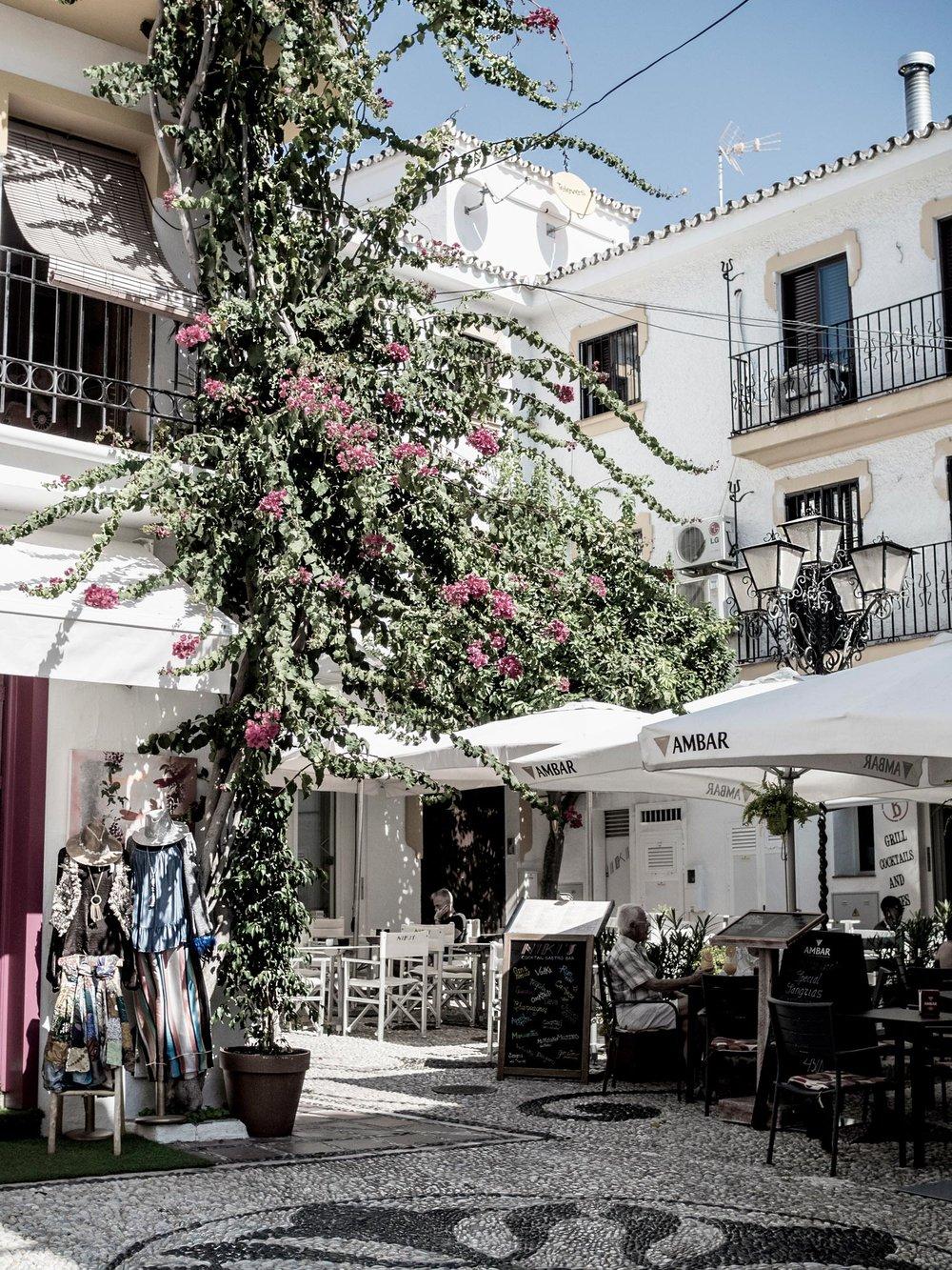 flower Marbella travel street photography