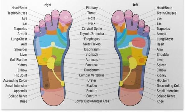 REFLEXOLOGY CHART.jpg