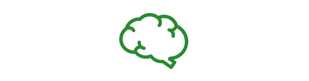 icon_brain.png