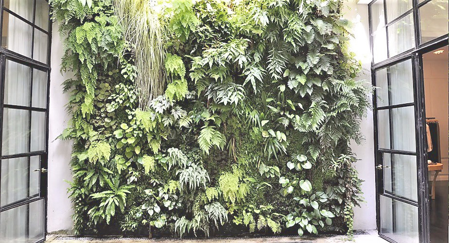 Greenwall2.jpg