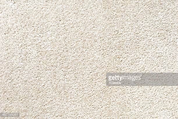 Carpet and Upholstery dry in about an hour, and stay cleaner longer than other methods -