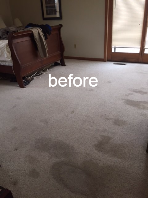 carpetbefore.png