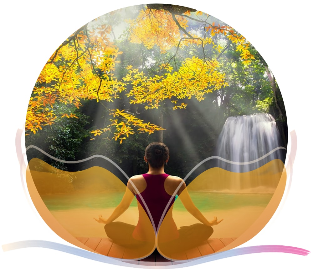 pétalos meditación.jpg