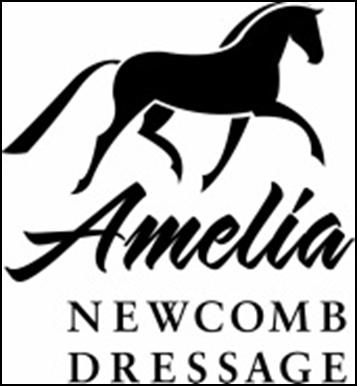 Amelia+Logo.png