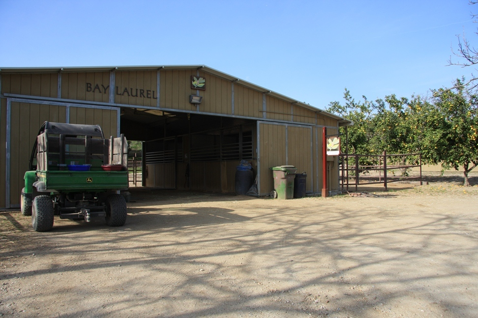 Bay Laurel Barn, featuring In & Outs and Premium Mattress Systems