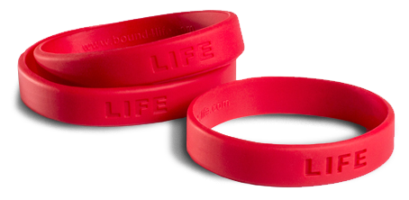 lifebands.png