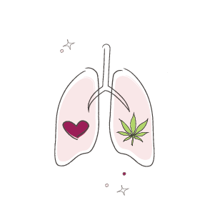 marijuana healthy lungs illustration