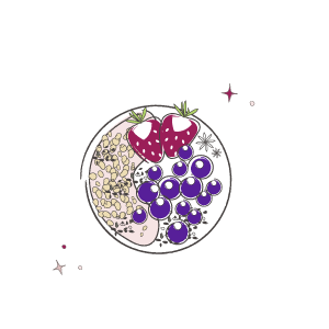 Acai bowl illustration