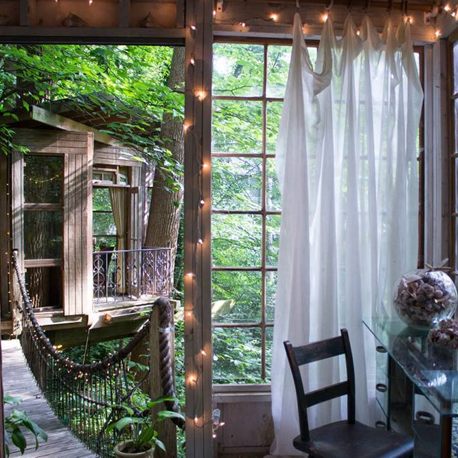 Dreamiest Airbnb's