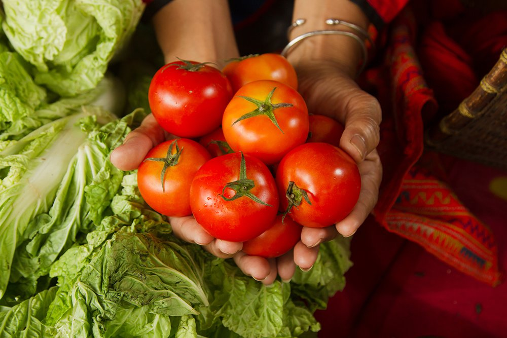woman-holding-tomatoes.jpg