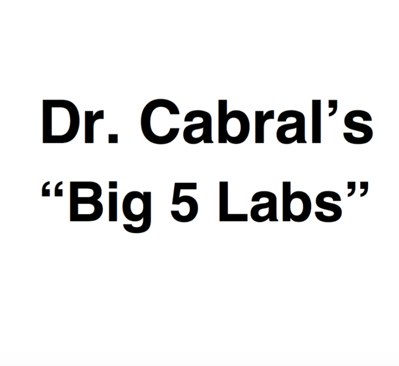"Dr. Cabral's Big 5 Labs    Dr. Cabral's ""Big 5"" Labs include:   HTMA    OAT    Omega-3    Food Sensitivity    Thyroid + Adrenal + Hormone   plus a 60-minute call with one of our Holistic Health Coaches to review your results and personalized recommendations."