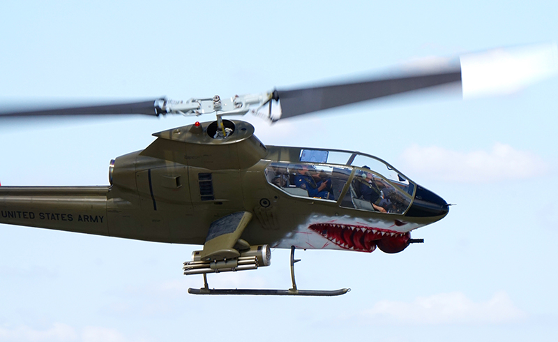 Cobra-2-LG1.jpg