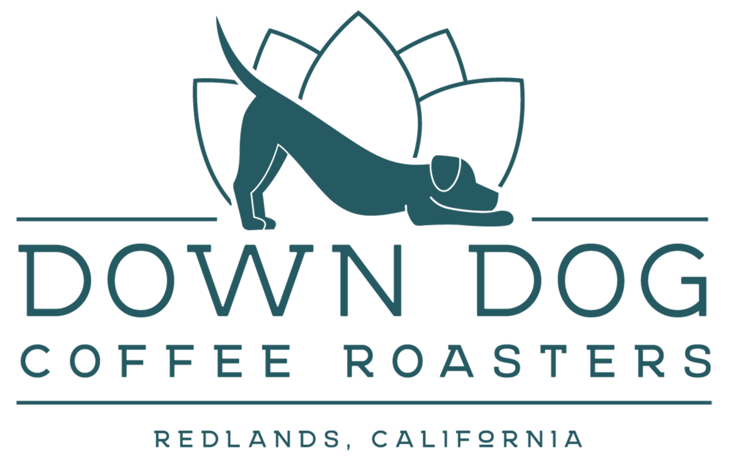 Down Dog Coffee Roasters