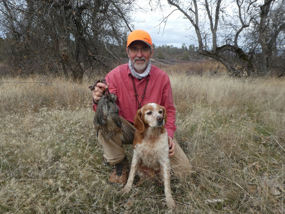 A successful valley quail hunt. By this point, Dory was feeling the affects of doing all the heavy lifting with his kennel-mate on the Injured Reserve List.