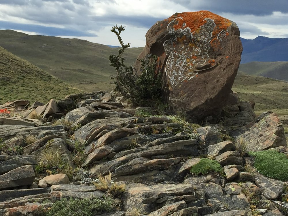 Patagonia Rock.JPG
