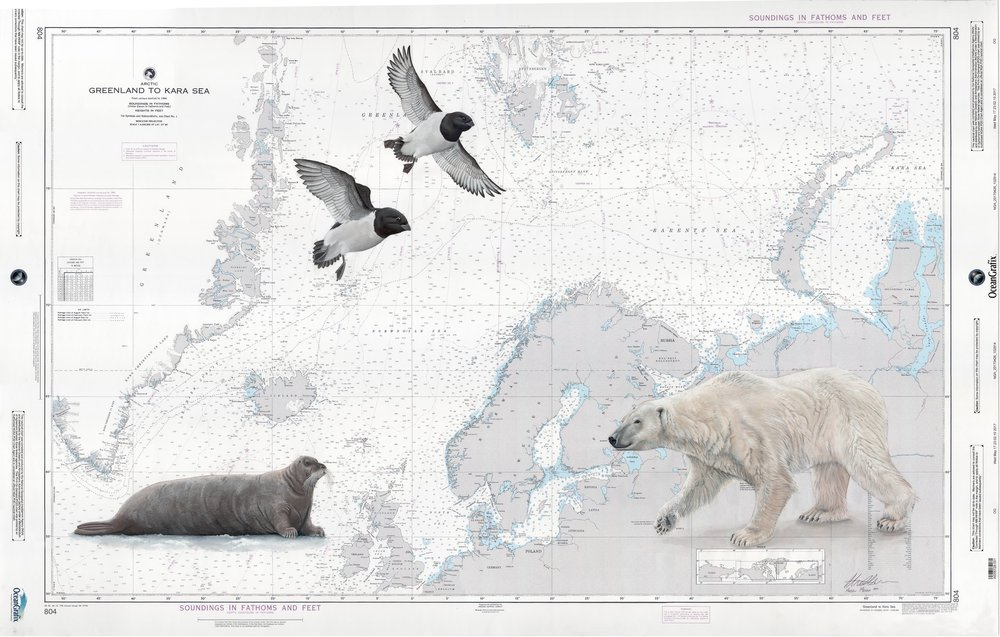 Arctic Chart Web Res.jpg