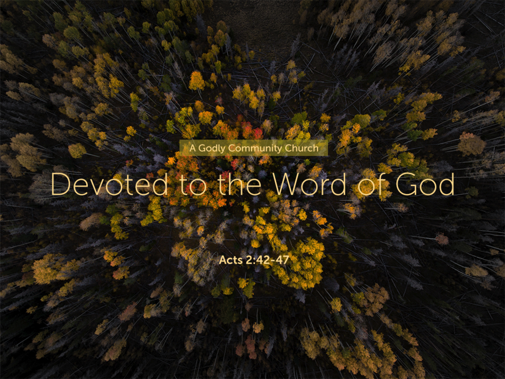 Devoted to the Word of God_052018_1024x768.png