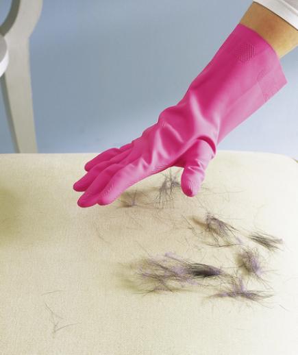 5-glove-pet-hair.jpg
