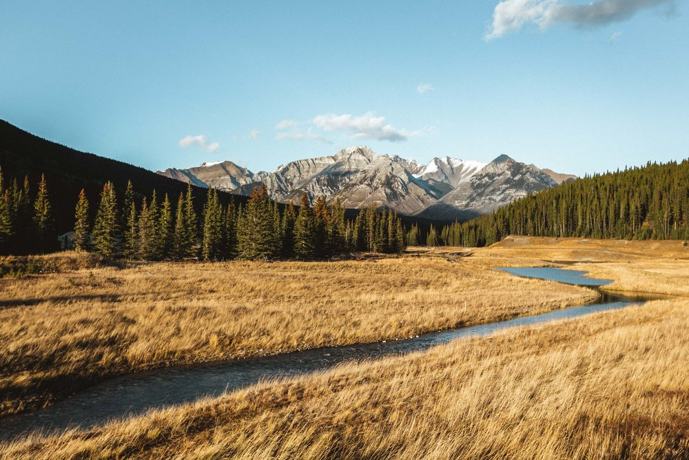 8 | Rush to the West - A blue stream rushing through a yellow valley surrounded by woods. It felt like a timeless scenery where a century ago, adventurers would cruise those rivers in search of gold. Banff National Park, October 2018.