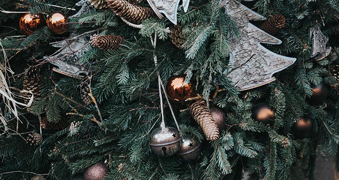 imagen+tree.JPG