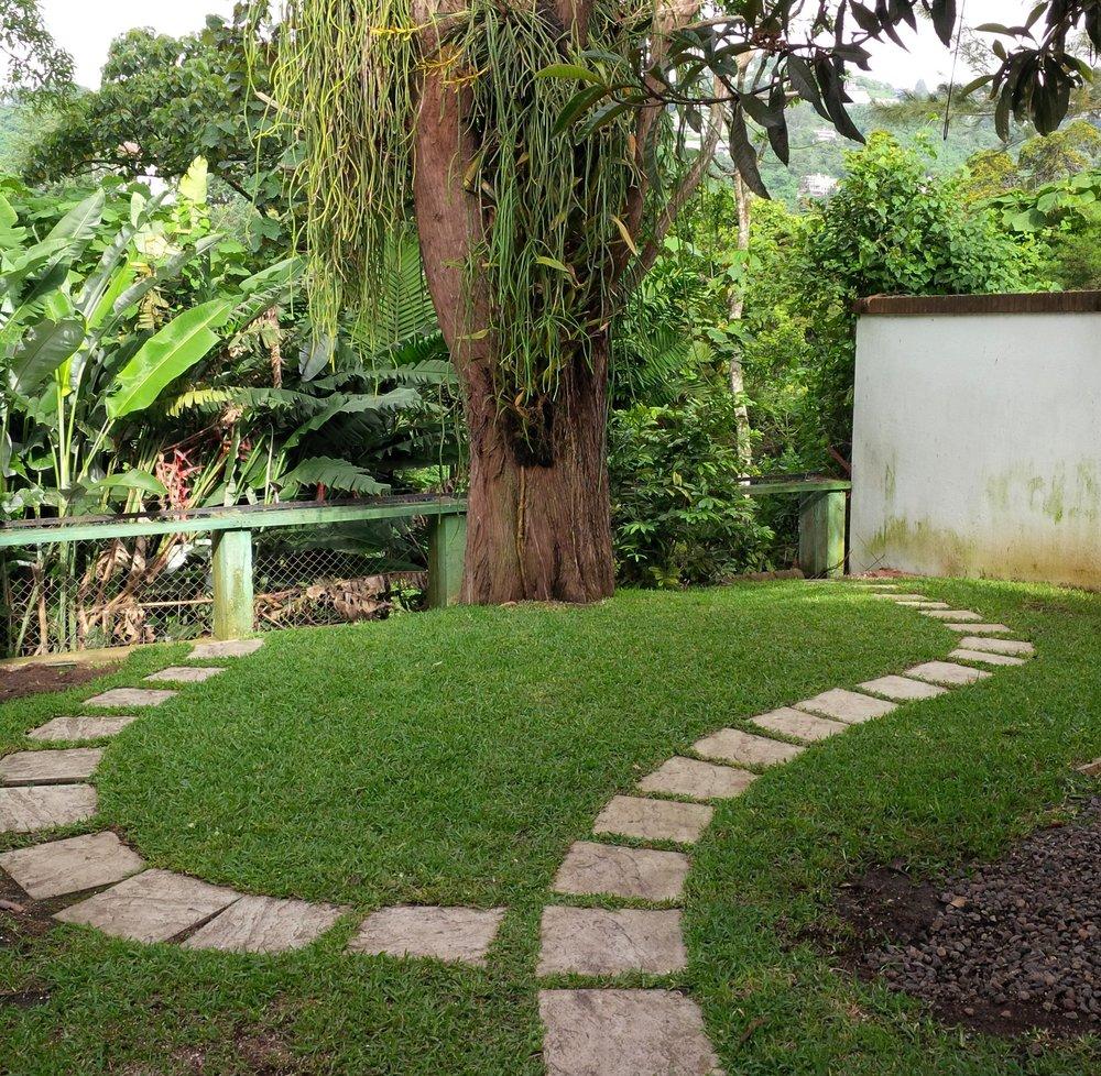 Empty garden July 2014