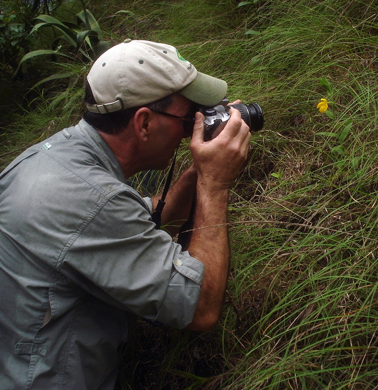 Photographing flowering  Cypripedium dickinsonianum  in mixed oak-agave habitat, central Guatemala (Image: F. Muller).