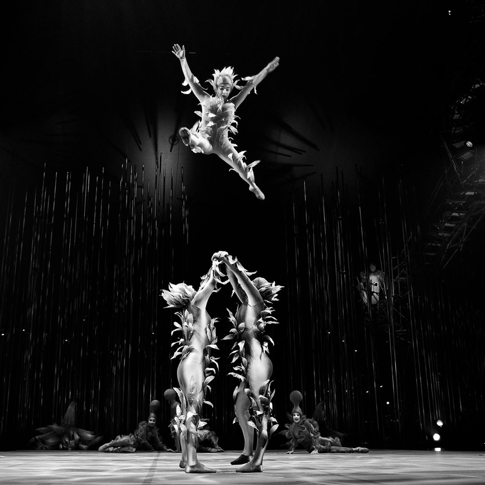 ka-cirque-du-soleil-bw-small.jpg