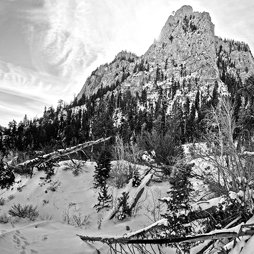 mount-charleston2-bw.jpg