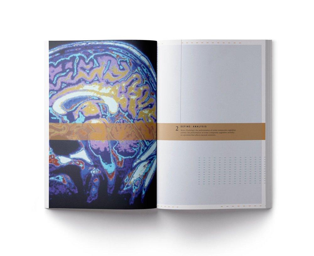 Cerebrum 12.jpg
