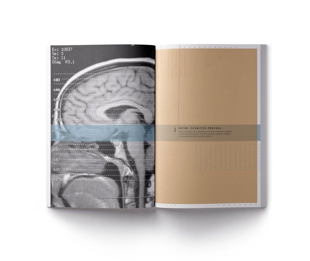 Cerebrum 2.jpg