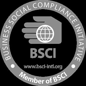 bsci-logo-9A2B890575-seeklogo.com.png
