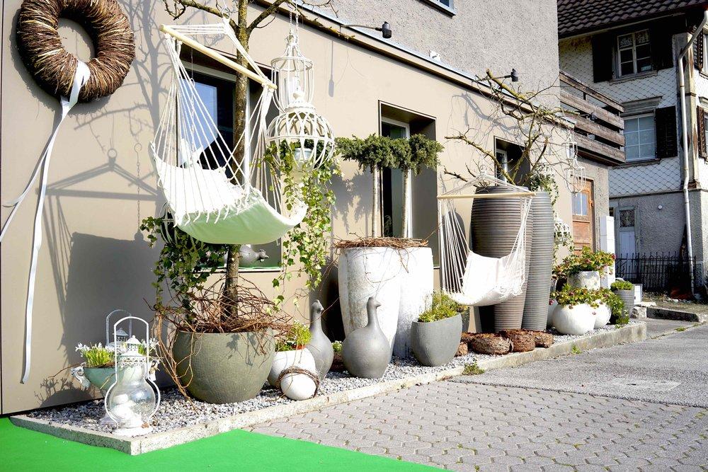 Blumeria Bild 1.jpg