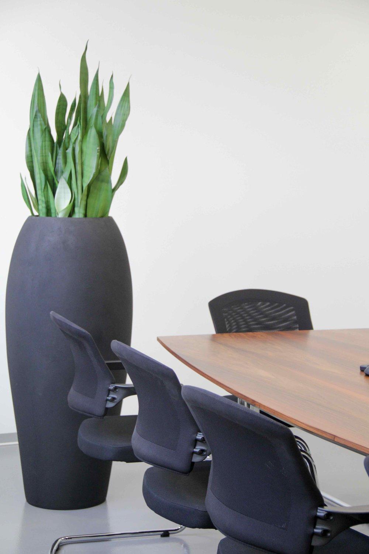 Bürobegrünung 1.jpg