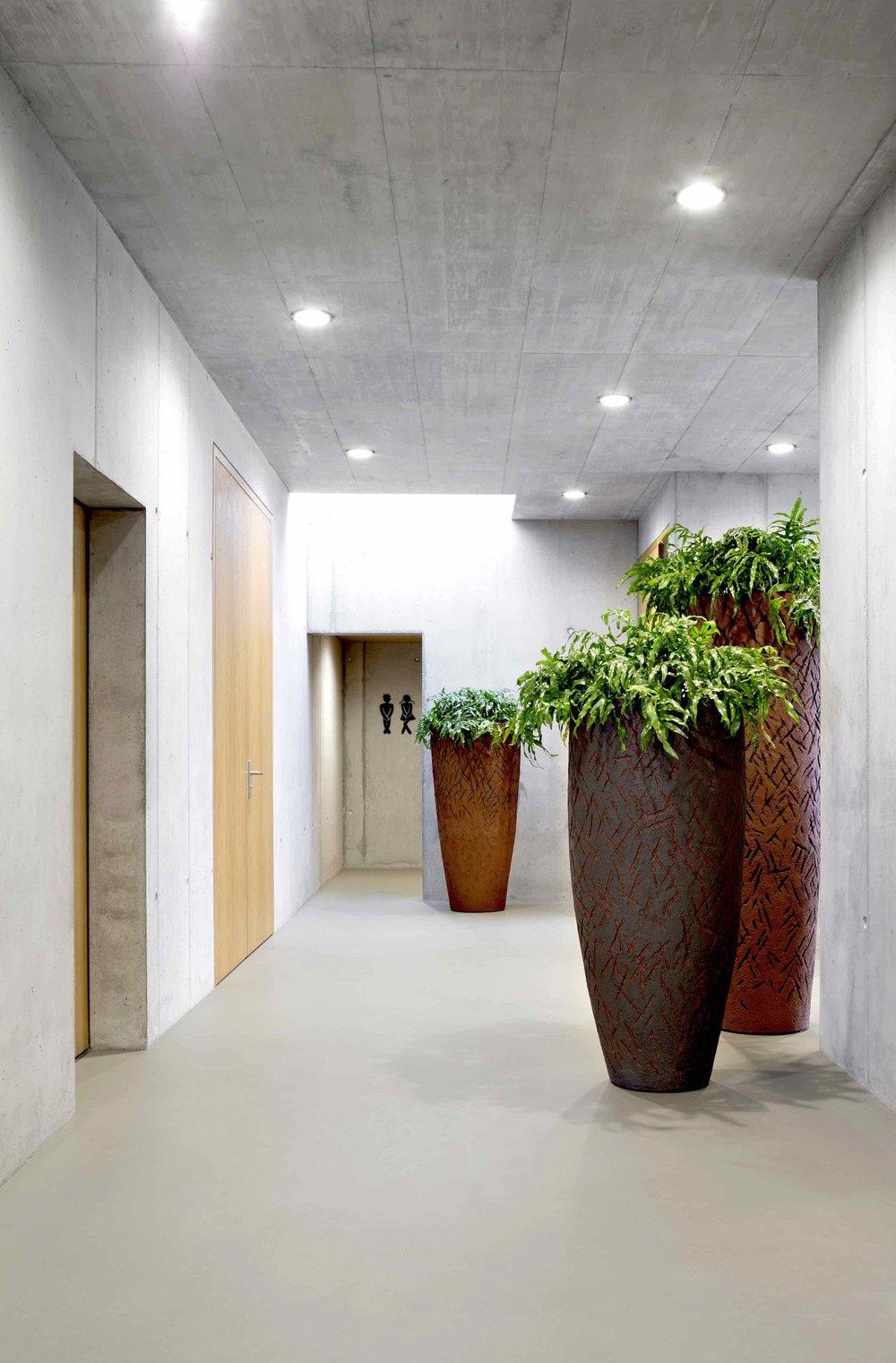 Bürobegrünung Blumeria2.jpg