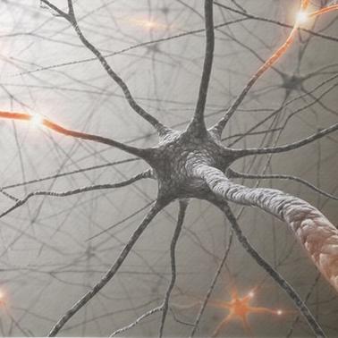 nevroner-tanker-selvfølelse