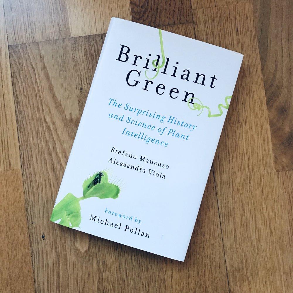 Om planters intelligens! En spennende bok å lese som en forlengelse av hvordan eteriske oljer virker og hvorfor de er så potente og kraftfulle!