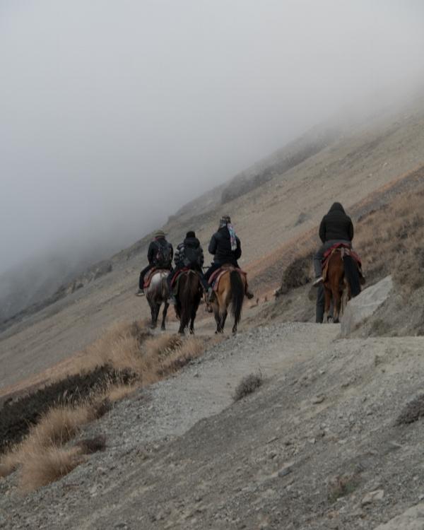 Toiset menee hevosilla, toiset jalan.