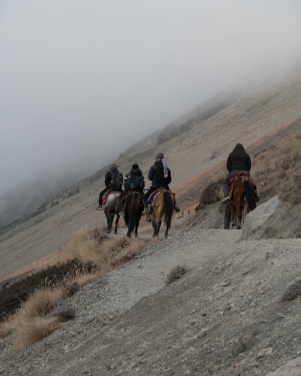 Others goes with horses, others by foot.